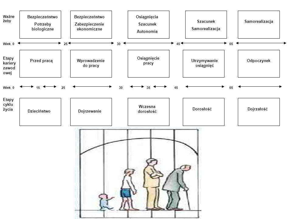 Schemat opracowania koncepcji rozwoju zawodowego: Autoanaliza, Autoocena Stworzenie planu rozwoju Podjęcie decyzji dot.