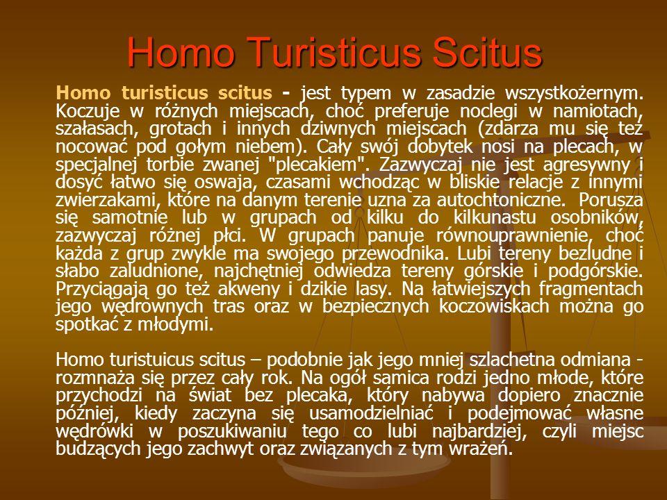 Homo Turisticus Scitus Homo turisticus scitus - jest typem w zasadzie wszystkożernym. Koczuje w różnych miejscach, choć preferuje noclegi w namiotach,