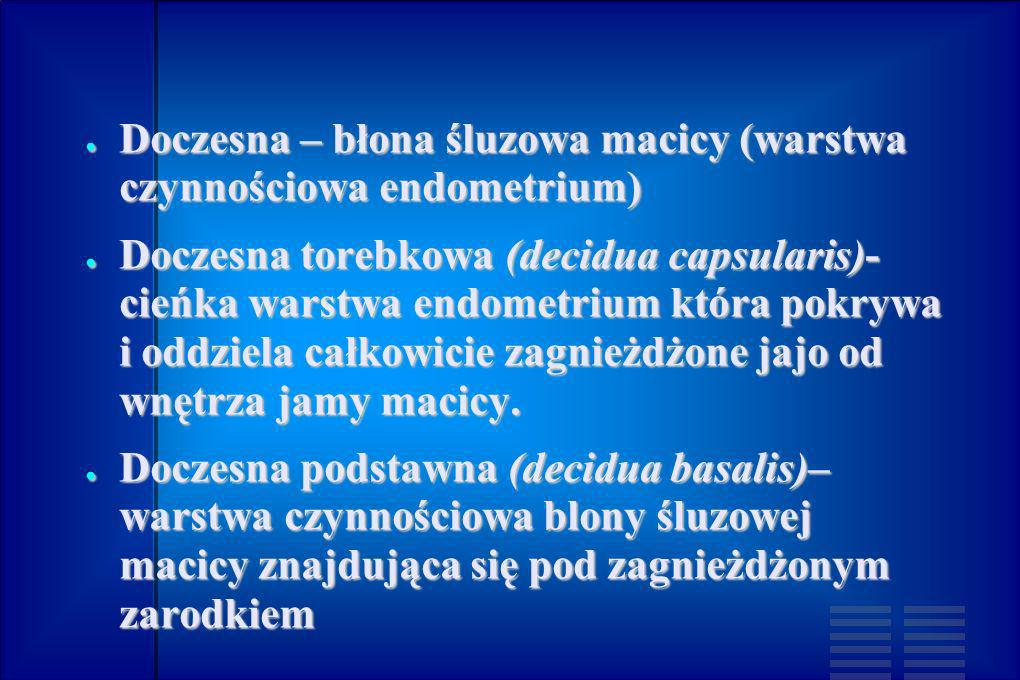 Doczesna – błona śluzowa macicy (warstwa czynnościowa endometrium) Doczesna – błona śluzowa macicy (warstwa czynnościowa endometrium) Doczesna torebko