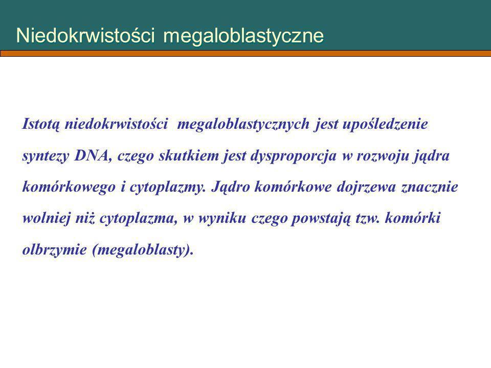 Niedokrwistości megaloblastyczne Istotą niedokrwistości megaloblastycznych jest upośledzenie syntezy DNA, czego skutkiem jest dysproporcja w rozwoju j
