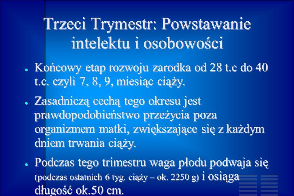 Trzeci Trymestr: Powstawanie intelektu i osobowości Końcowy etap rozwoju zarodka od 28 t.c do 40 t.c. czyli 7, 8, 9, miesiąc ciąży. Końcowy etap rozwo