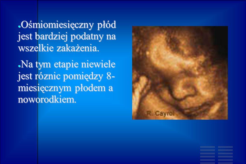 Ośmiomiesięczny płód jest bardziej podatny na wszelkie zakażenia. Ośmiomiesięczny płód jest bardziej podatny na wszelkie zakażenia. Na tym etapie niew