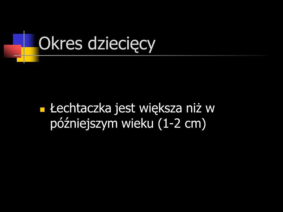 Okres dziecięcy Łechtaczka jest większa niż w późniejszym wieku (1-2 cm)