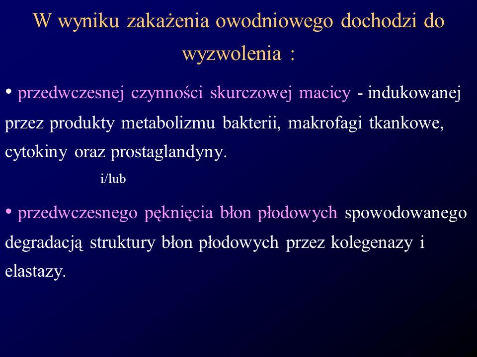 W wyniku zakażenia owodniowego dochodzi do wyzwolenia : przedwczesnej czynności skurczowej macicy - indukowanej przez produkty metabolizmu bakterii, m