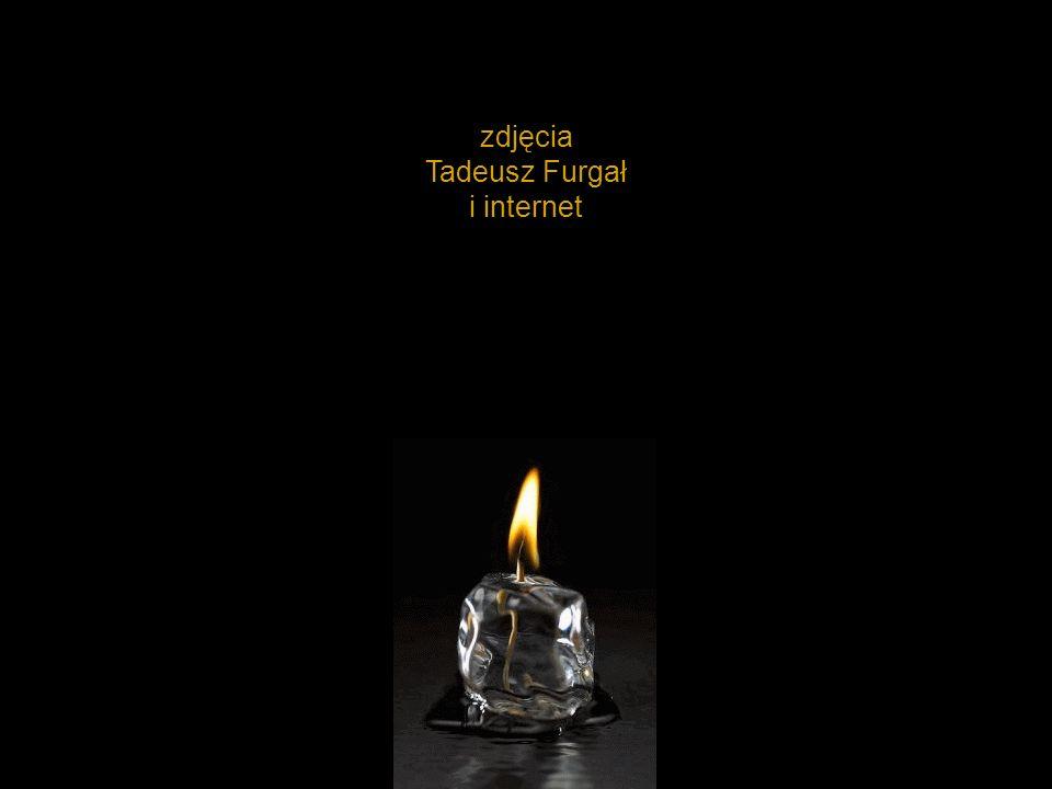 zdjęcia Tadeusz Furgał i internet
