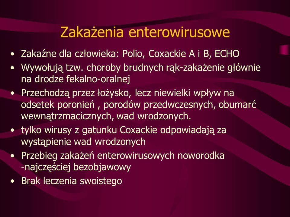 Zakażenia enterowirusowe Zakaźne dla człowieka: Polio, Coxackie A i B, ECHO Wywołują tzw.