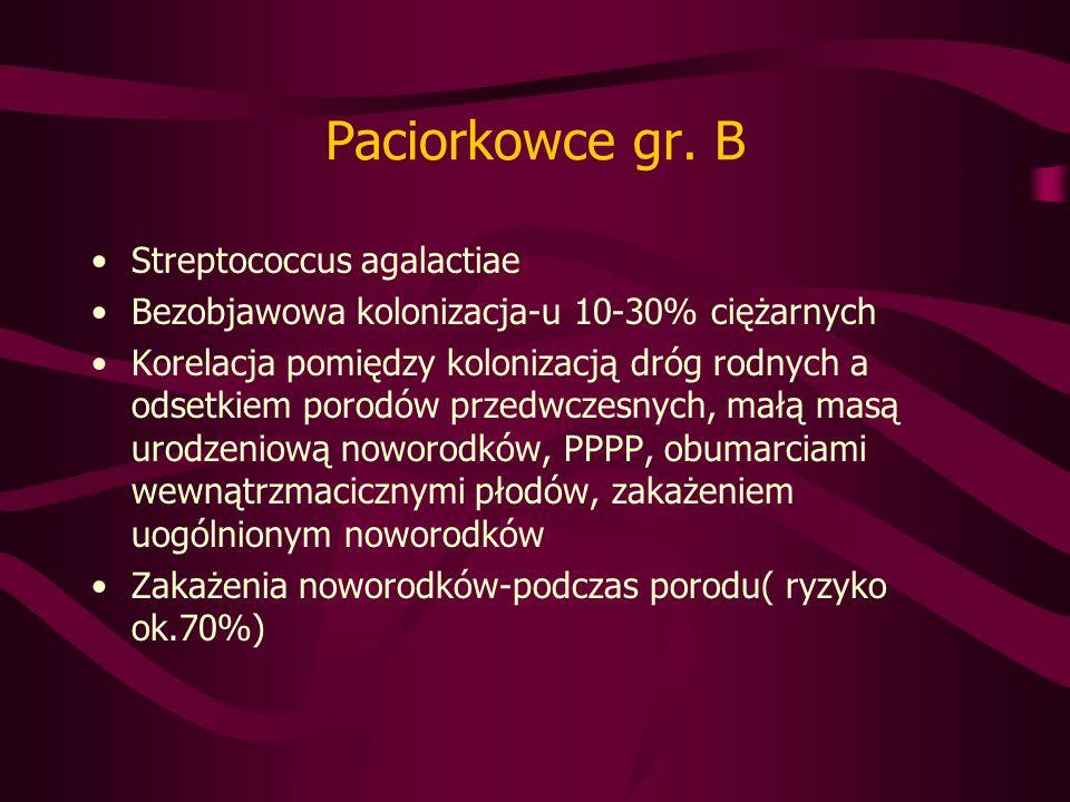 Paciorkowce gr.