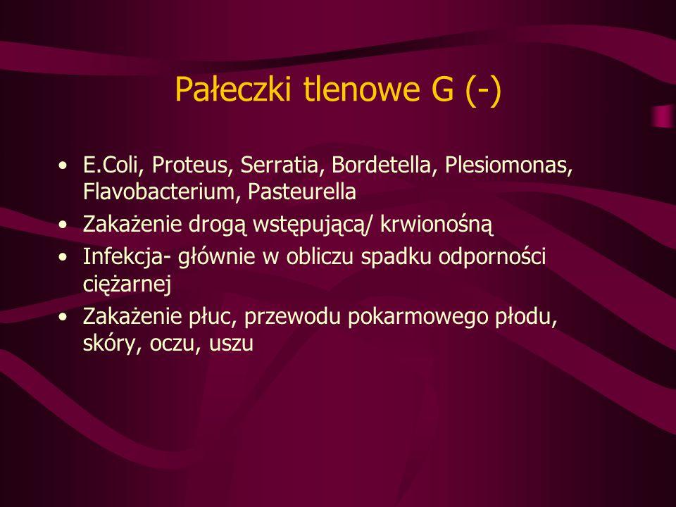Pałeczki tlenowe G (-) E.Coli, Proteus, Serratia, Bordetella, Plesiomonas, Flavobacterium, Pasteurella Zakażenie drogą wstępującą/ krwionośną Infekcja- głównie w obliczu spadku odporności ciężarnej Zakażenie płuc, przewodu pokarmowego płodu, skóry, oczu, uszu