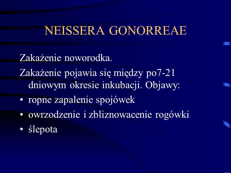 NEISSERA GONORREAE Zakażenie noworodka. Zakażenie pojawia się między po7-21 dniowym okresie inkubacji. Objawy: ropne zapalenie spojówek owrzodzenie i