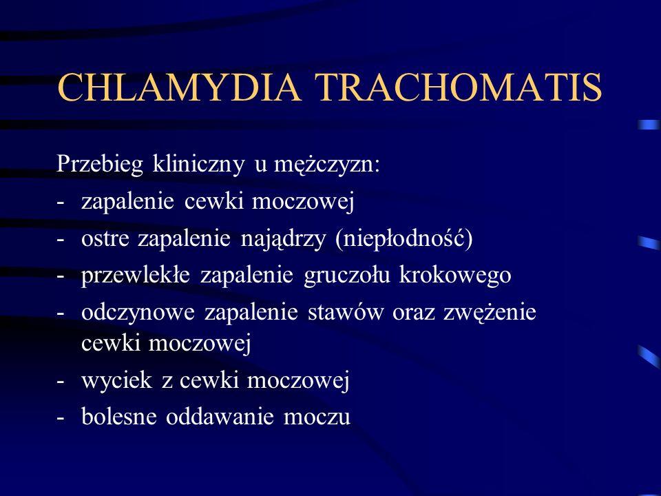 CHLAMYDIA TRACHOMATIS Przebieg kliniczny u mężczyzn: -zapalenie cewki moczowej -ostre zapalenie najądrzy (niepłodność) -przewlekłe zapalenie gruczołu krokowego -odczynowe zapalenie stawów oraz zwężenie cewki moczowej -wyciek z cewki moczowej -bolesne oddawanie moczu