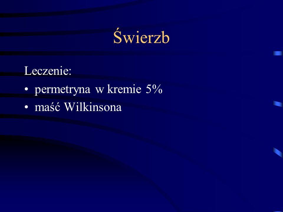 Świerzb Leczenie: permetryna w kremie 5% maść Wilkinsona
