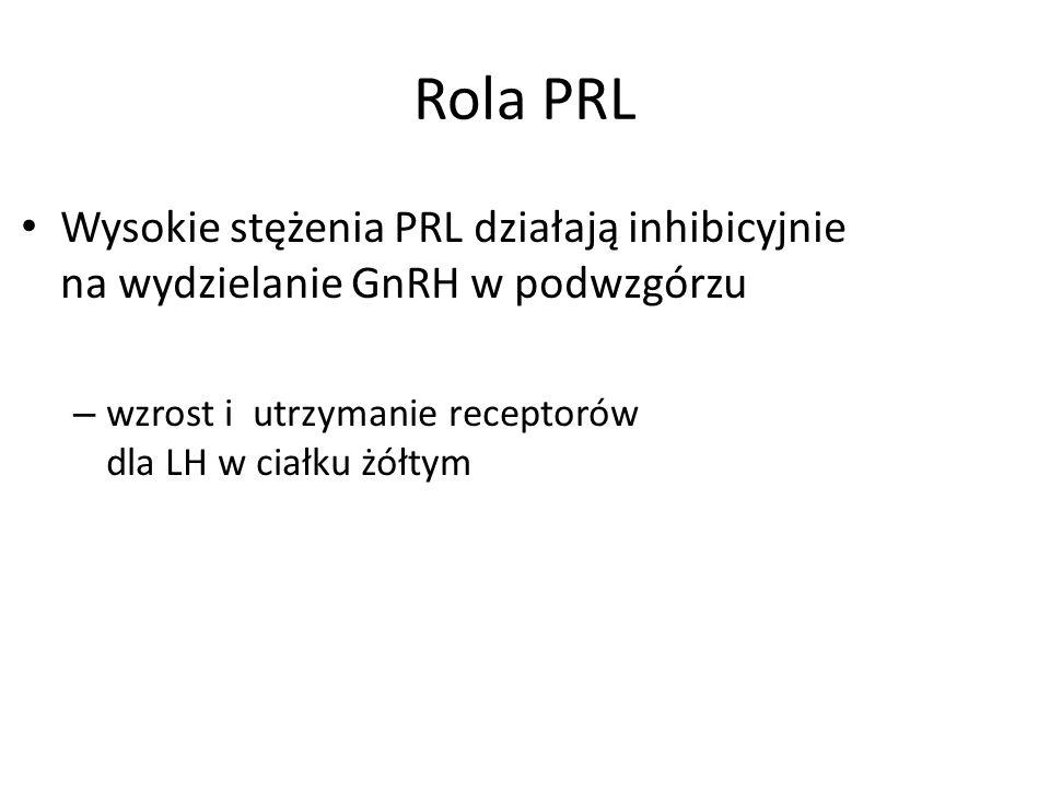 Rola PRL Wysokie stężenia PRL działają inhibicyjnie na wydzielanie GnRH w podwzgórzu – wzrost i utrzymanie receptorów dla LH w ciałku żółtym