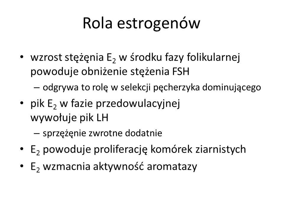 Rola estrogenów wzrost stężęnia E 2 w środku fazy folikularnej powoduje obniżenie stężenia FSH – odgrywa to rolę w selekcji pęcherzyka dominującego pik E 2 w fazie przedowulacyjnej wywołuje pik LH – sprzężęnie zwrotne dodatnie E 2 powoduje proliferację komórek ziarnistych E 2 wzmacnia aktywność aromatazy