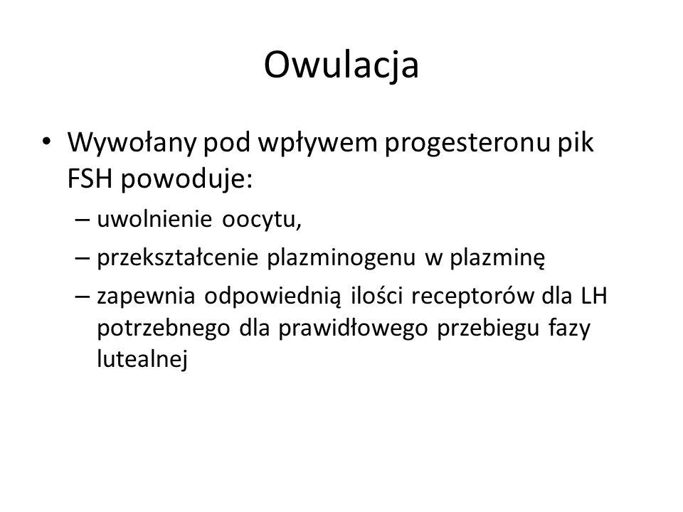 Owulacja Wywołany pod wpływem progesteronu pik FSH powoduje: – uwolnienie oocytu, – przekształcenie plazminogenu w plazminę – zapewnia odpowiednią ilo