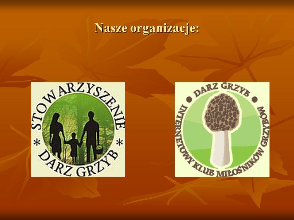 Nasze organizacje:
