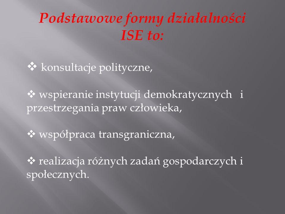 Podstawowe formy działalności ISE to: konsultacje polityczne, wspieranie instytucji demokratycznych i przestrzegania praw człowieka, współpraca transgraniczna, realizacja różnych zadań gospodarczych i społecznych.