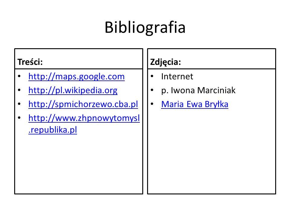 Bibliografia Treści: http://maps.google.com http://pl.wikipedia.org http://spmichorzewo.cba.pl http://www.zhpnowytomysl.republika.pl http://www.zhpnow