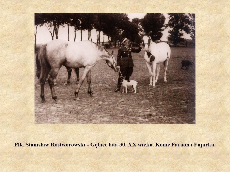 Płk. Stanisław Rostworowski - Gębice lata 30. XX wieku. Konie Faraon i Fujarka.