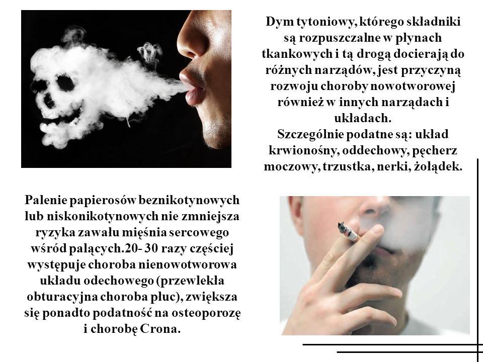 Palenie papierosów beznikotynowych lub niskonikotynowych nie zmniejsza ryzyka zawału mięśnia sercowego wśród palących.20- 30 razy częściej występuje c