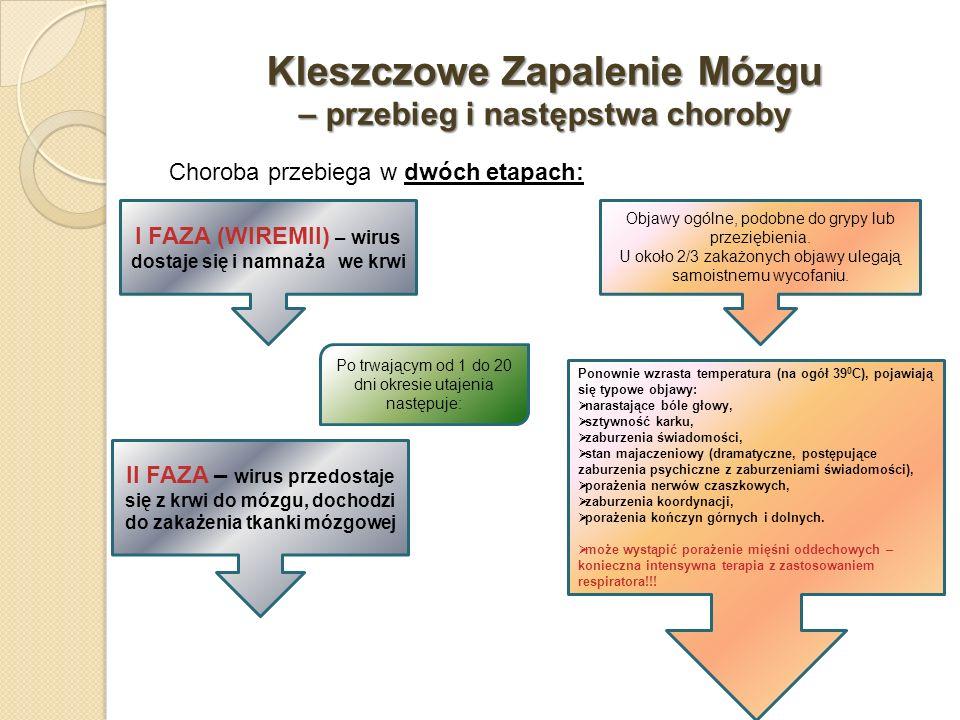 Kleszczowe Zapalenie Mózgu – przebieg i następstwa choroby Choroba przebiega w dwóch etapach: I FAZA (WIREMII) – wirus dostaje się i namnaża we krwi I