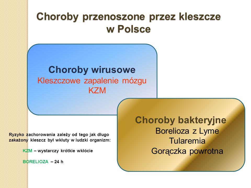 Choroby przenoszone przez kleszcze w Polsce Choroby wirusowe Kleszczowe zapalenie mózgu KZM Choroby bakteryjne Borelioza z Lyme Tularemia Gorączka pow