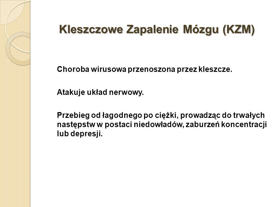 Kleszczowe Zapalenie Mózgu (KZM) Choroba wirusowa przenoszona przez kleszcze. Atakuje układ nerwowy. Przebieg od łagodnego po ciężki, prowadząc do trw