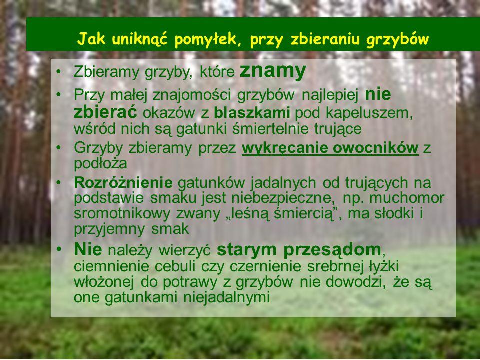 Jak uniknąć pomyłek, przy zbieraniu grzybów Zbieramy grzyby, które znamy Przy małej znajomości grzybów najlepiej nie zbierać okazów z blaszkami pod ka