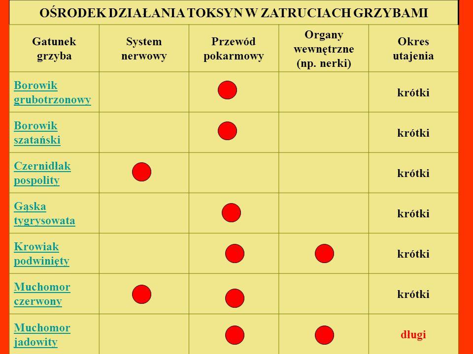 OŚRODEK DZIAŁANIA TOKSYN W ZATRUCIACH GRZYBAMI Gatunek grzyba System nerwowy Przewód pokarmowy Organy wewnętrzne (np. nerki) Okres utajenia Borowik gr