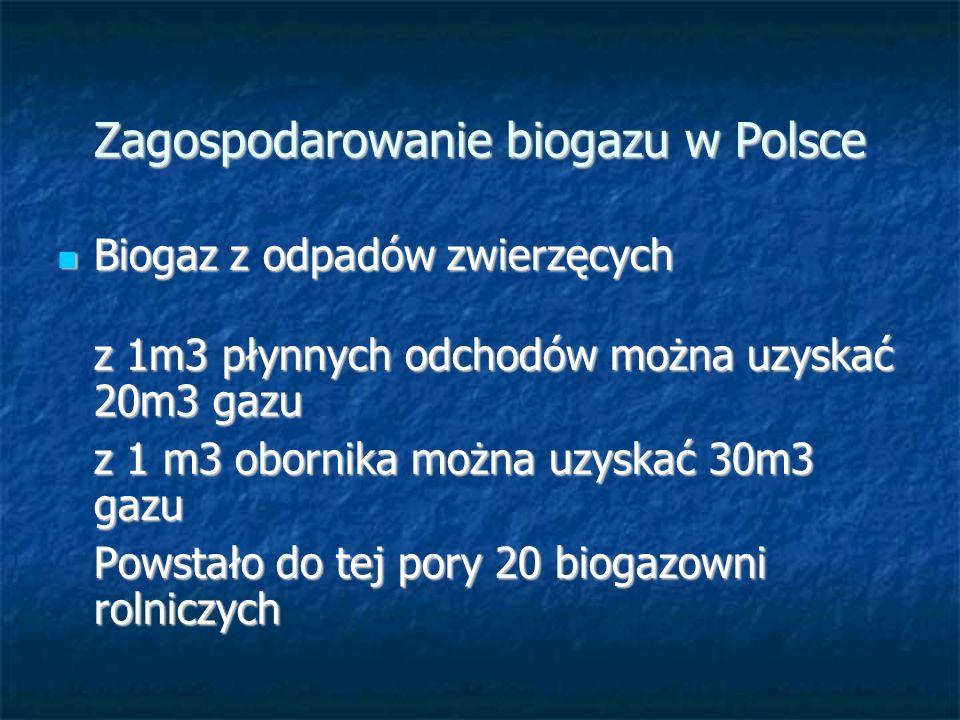 Zagospodarowanie biogazu w Polsce Biogaz z odpadów zwierzęcych Biogaz z odpadów zwierzęcych z 1m3 płynnych odchodów można uzyskać 20m3 gazu z 1 m3 obornika można uzyskać 30m3 gazu Powstało do tej pory 20 biogazowni rolniczych