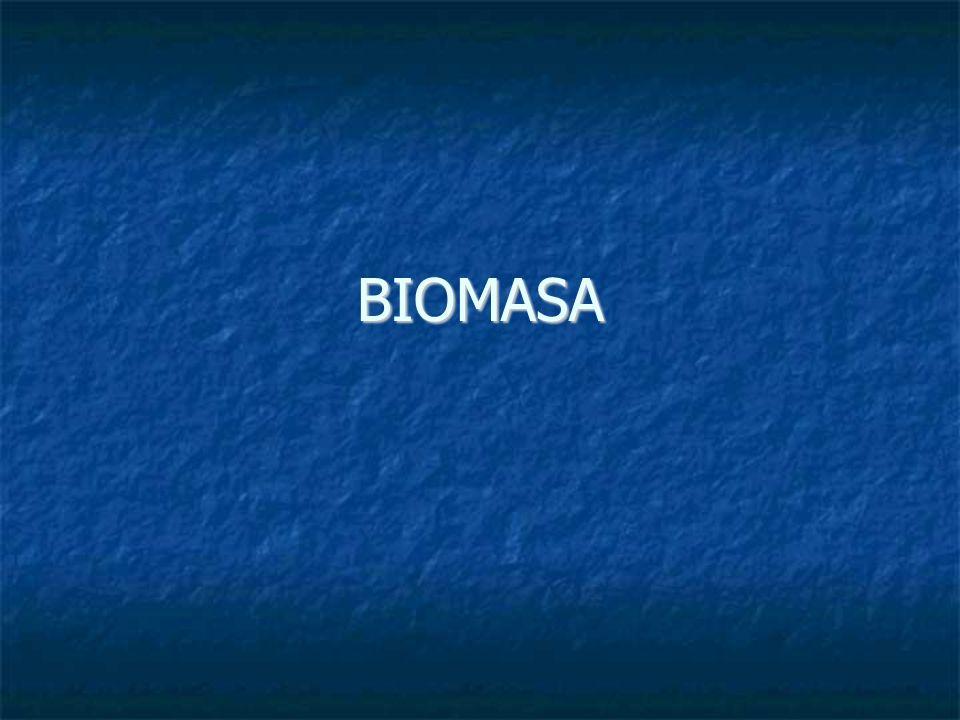 Definicja biomasy: Biomasa jest to substancja organiczna powstająca w wyniku procesu fotosyntezy.