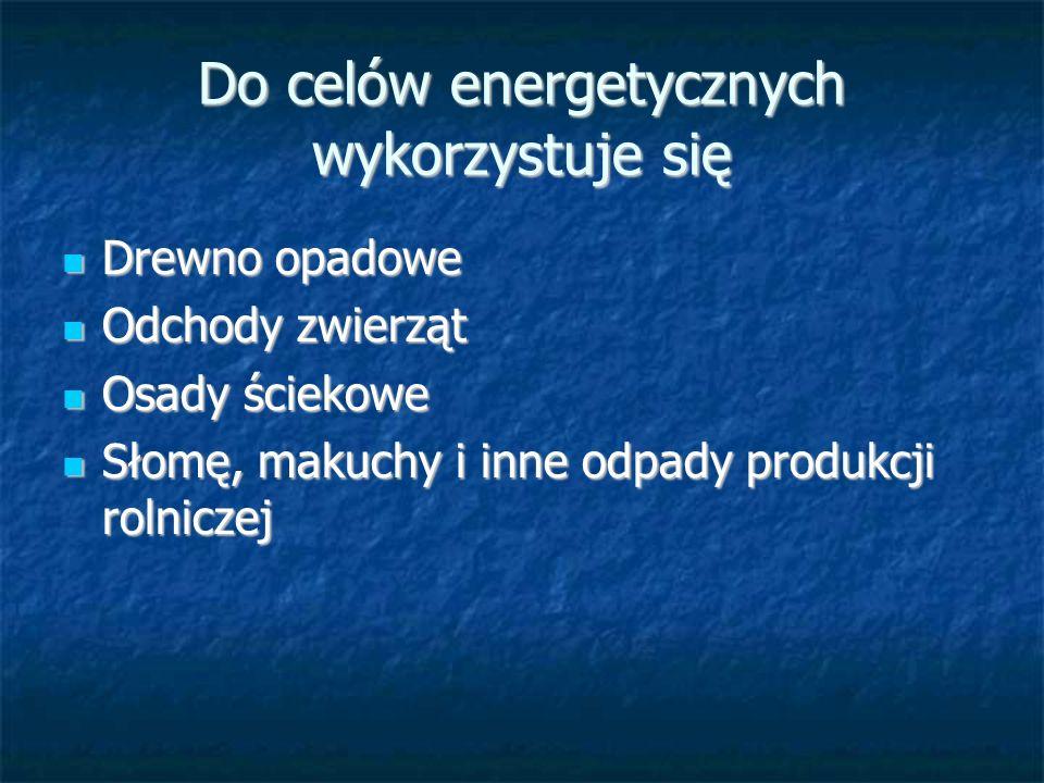 Zagospodarowanie biogazu w Polsce Biogaz z osadu ściekowego Biogaz z osadu ściekowego 1759 oczyszczalni przemysłowych 1471 oczyszczalni ścieków w 1999 roku wyprodukowały 72,5 GWh energii elektrycznej 250 TJ energii cieplnej