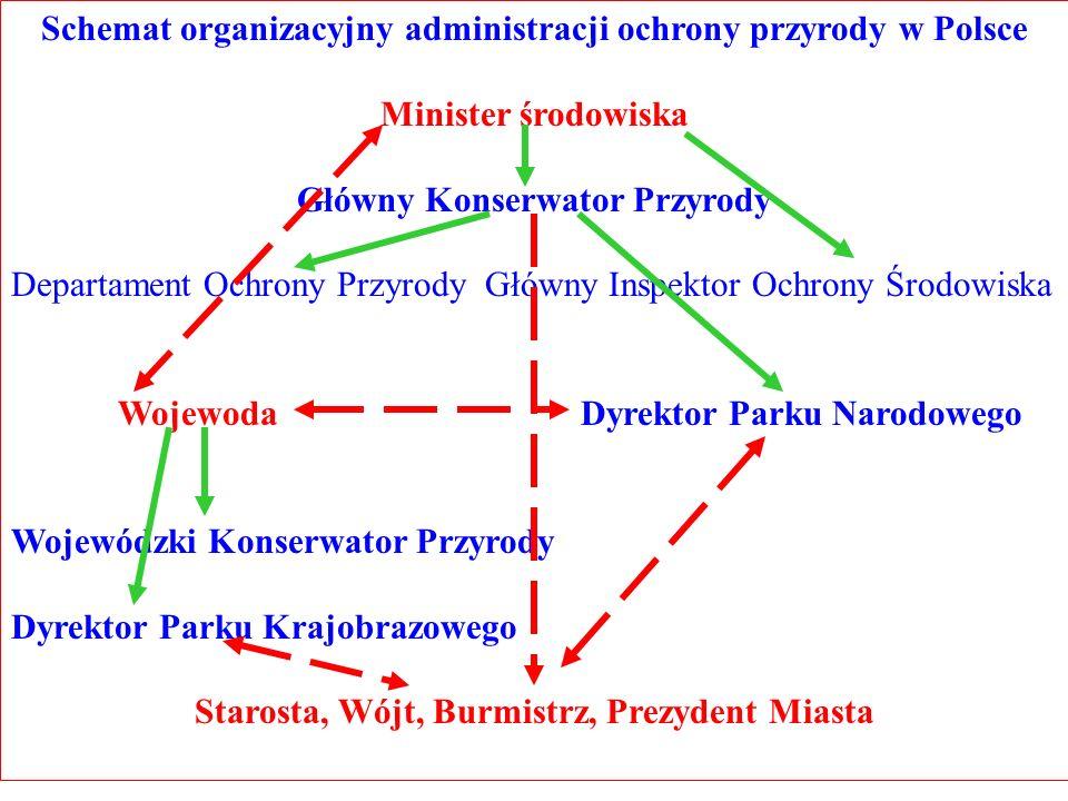 Schemat organizacyjny administracji ochrony przyrody w Polsce Minister środowiska Główny Konserwator Przyrody Departament Ochrony Przyrody Główny Insp