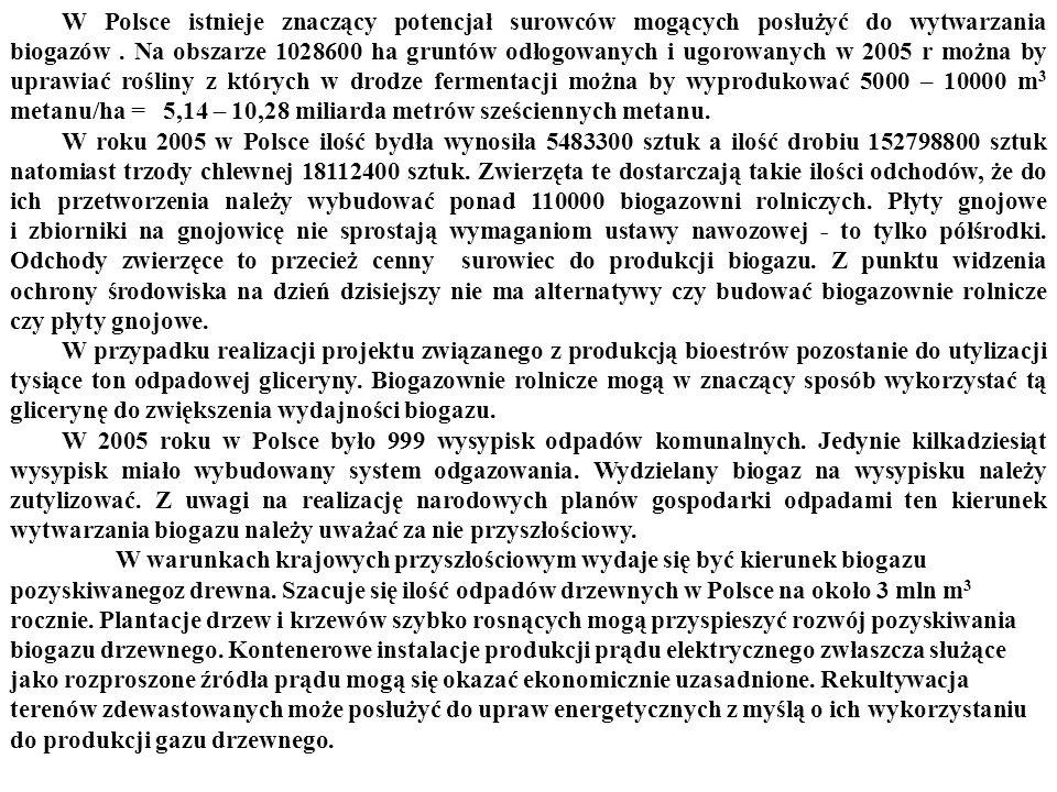 W Polsce istnieje znaczący potencjał surowców mogących posłużyć do wytwarzania biogazów.