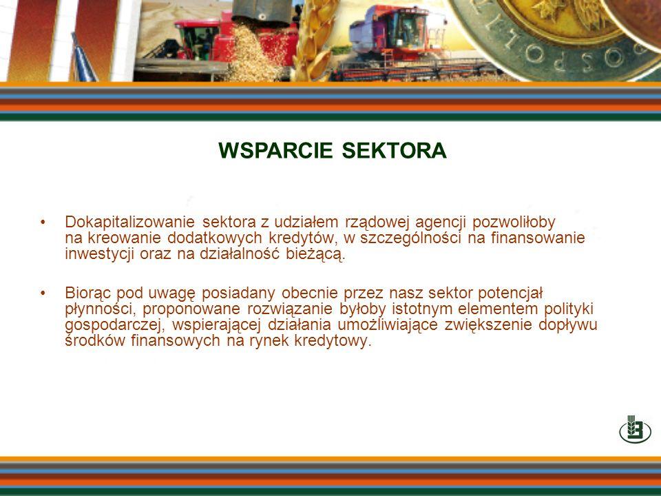 Dokapitalizowanie sektora z udziałem rządowej agencji pozwoliłoby na kreowanie dodatkowych kredytów, w szczególności na finansowanie inwestycji oraz n