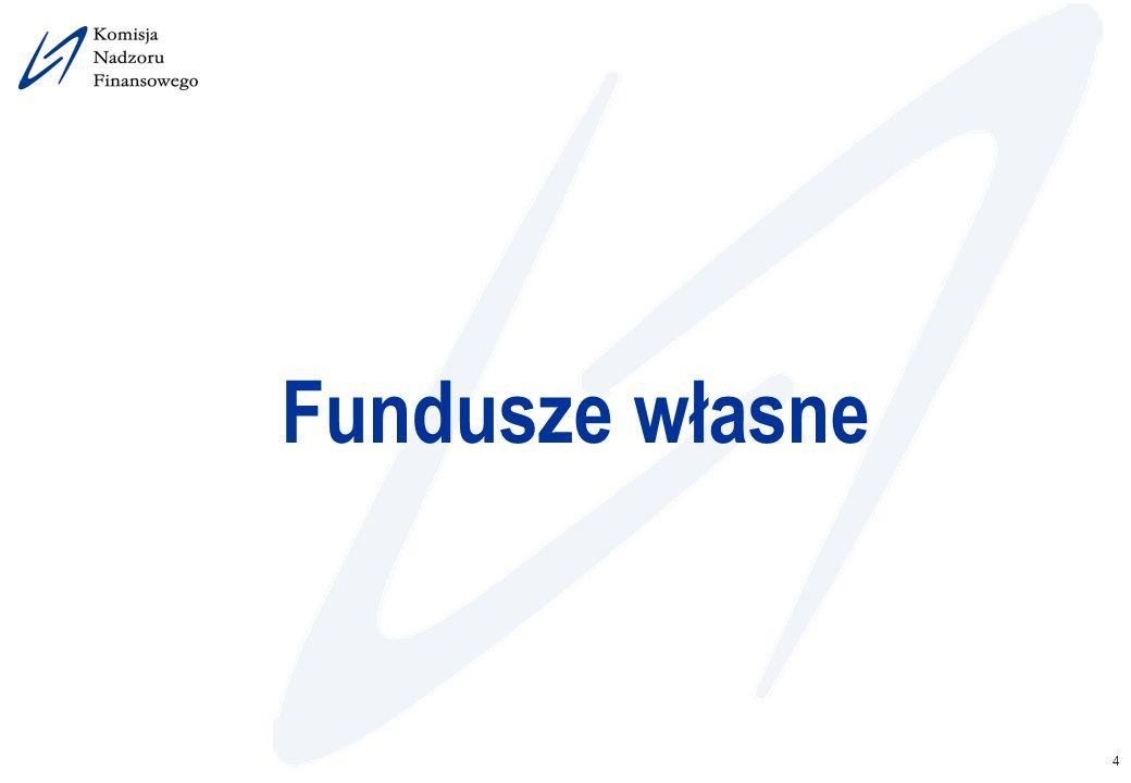 4 Fundusze własne