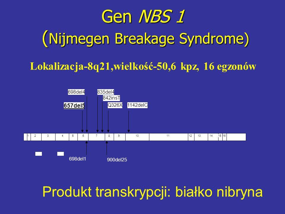 Gen NBS 1 ( Nijmegen Breakage Syndrome) Lokalizacja-8q21,wielkość-50,6 kpz, 16 egzonów 657del5 698del4835del4 842insT 1142delCQ326X 123456789101112131