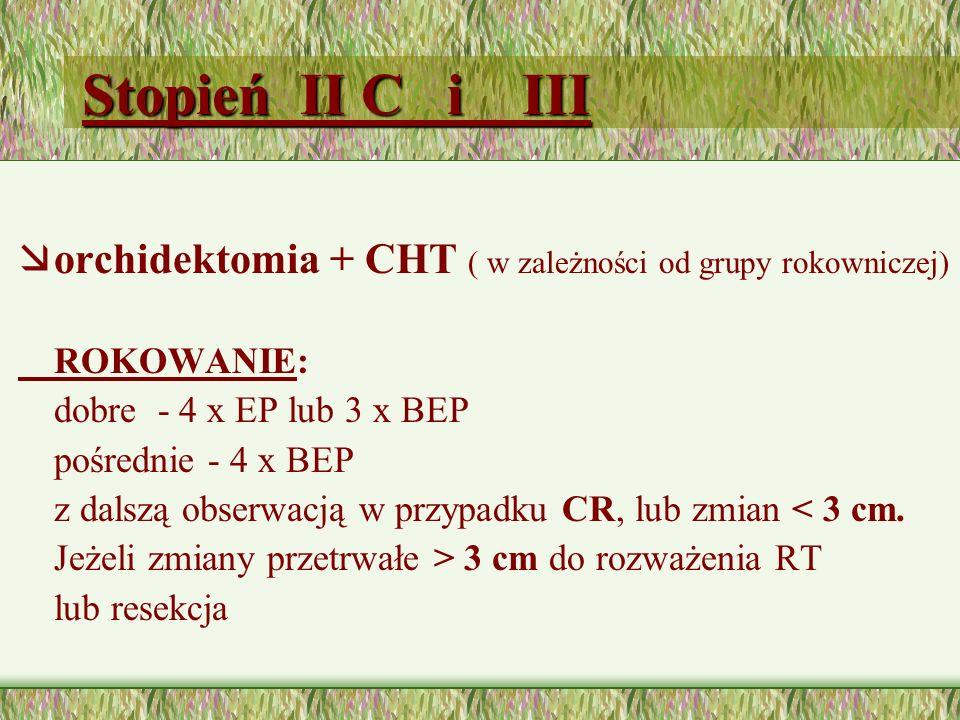 Stopień II C i III æorchidektomia + CHT ( w zależności od grupy rokowniczej) ROKOWANIE: dobre - 4 x EP lub 3 x BEP pośrednie - 4 x BEP z dalszą obserwacją w przypadku CR, lub zmian < 3 cm.