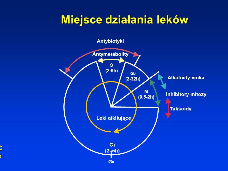 Antybiotyki Antymetabolity S (2-6h) G 2 (2-32h) M (0.5-2h) Leki alkilujące G 1 (2- h) G0G0 Alkaloidy vinka Inhibitory mitozy Taksoidy Miejsce działania leków Cell cycle levelCell cycle levelCell cycle levelCell cycle level