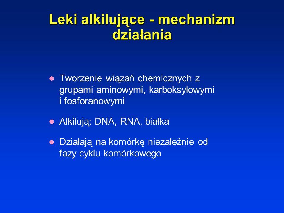 Leki alkilujące - mechanizm działania Tworzenie wiązań chemicznych z grupami aminowymi, karboksylowymi i fosforanowymi Alkilują: DNA, RNA, białka Działają na komórkę niezależnie od fazy cyklu komórkowego