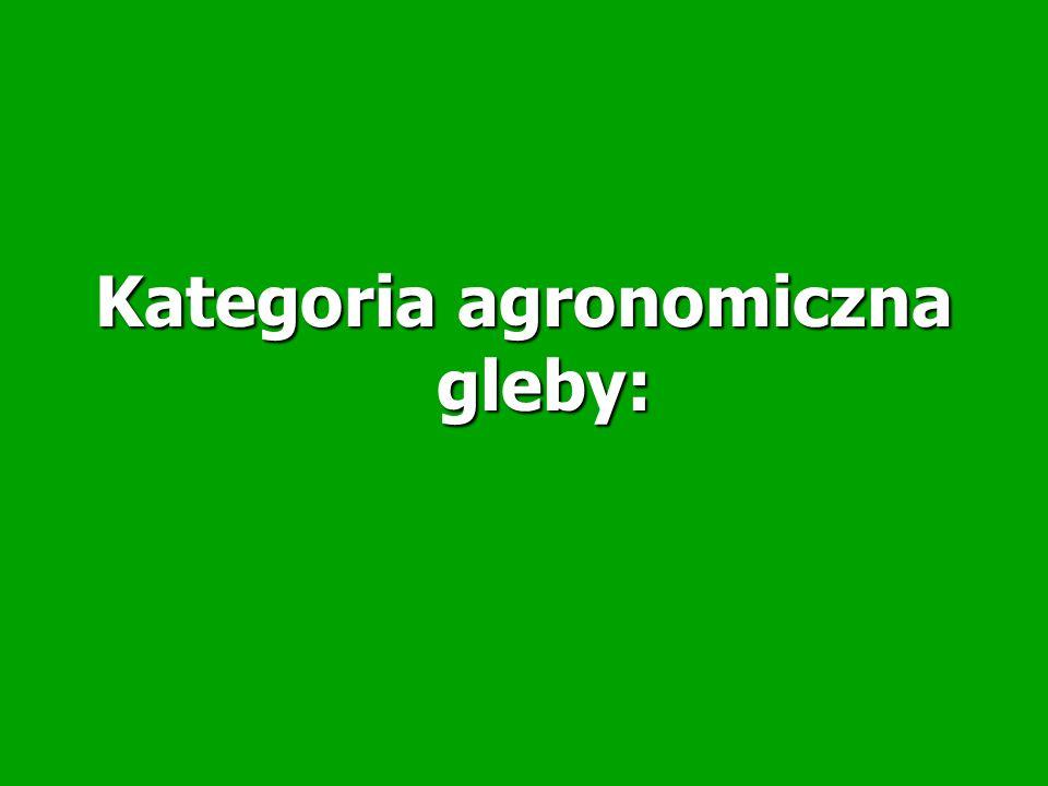 Kategoria agronomiczna gleby: