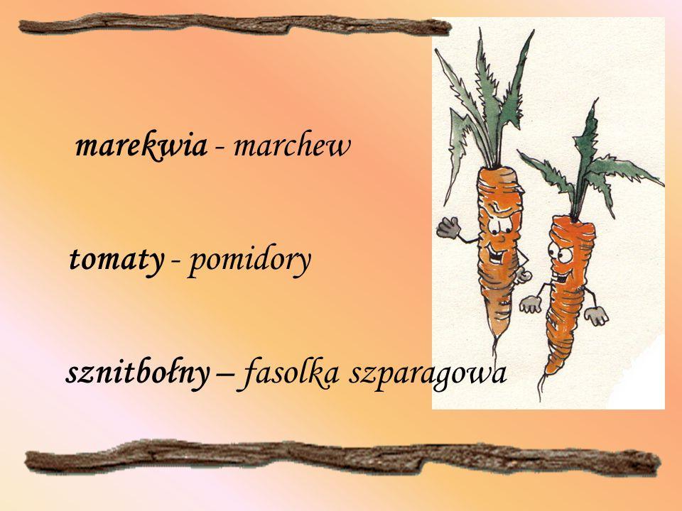 marekwia - marchew tomaty - pomidory sznitbołny – fasolka szparagowa