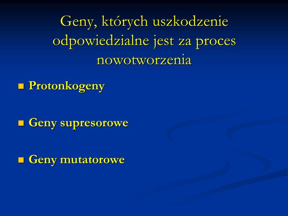 Protoonkogeny Obecne w genomie każdej komórki, odpowiedzialne za prawidłowy przebieg cyklu komórkowego, różnicowania i apoptozy Obecne w genomie każdej komórki, odpowiedzialne za prawidłowy przebieg cyklu komórkowego, różnicowania i apoptozy Mutacje protoonkogenów prowadzą do powstania onkogenów a kodowane przez nie produkty pobudzają niekontrolowany podział komórek nowotworowych, wydłużają ich cykl życiowy, zwiększają ich przeżywalność Mutacje protoonkogenów prowadzą do powstania onkogenów a kodowane przez nie produkty pobudzają niekontrolowany podział komórek nowotworowych, wydłużają ich cykl życiowy, zwiększają ich przeżywalność Mutacje protoonkogenów mają charakter dominujący Mutacje protoonkogenów mają charakter dominujący