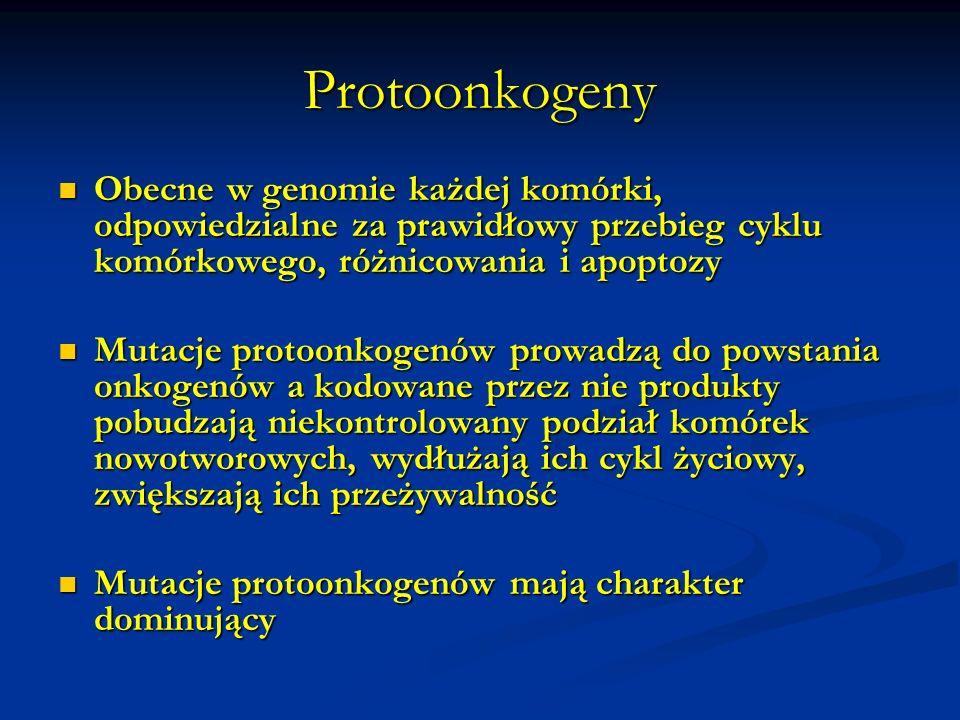 Badanie mikroskopowe Badanie cytologiczne Badanie cytologiczne Badanie histopatologiczne Badanie histopatologiczne Badania immunohistochemiczne Badania immunohistochemiczne Badania immunofluorescencyjne Badania immunofluorescencyjne FISH FISH Badania molekularne Badania molekularne