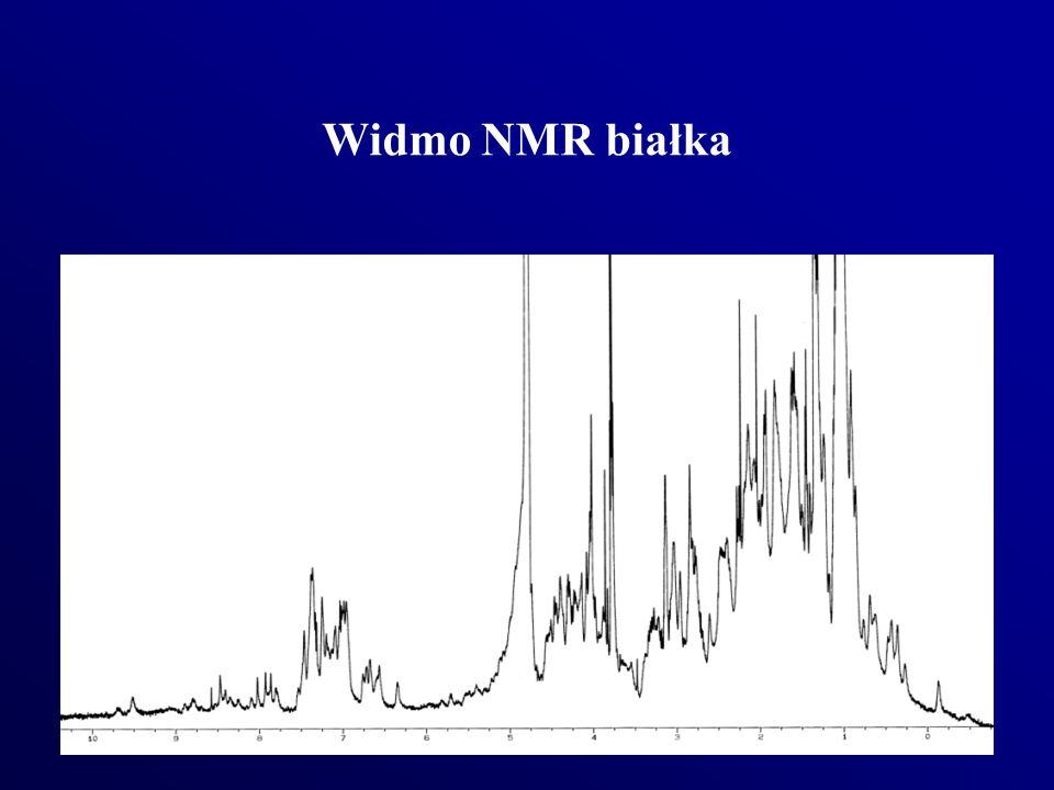 Widmo NMR białka