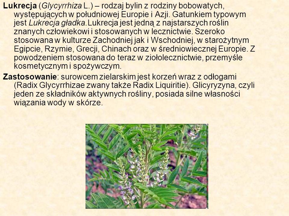 Lukrecja (Glycyrrhiza L.) – rodzaj bylin z rodziny bobowatych, występujących w południowej Europie i Azji. Gatunkiem typowym jest Lukrecja gładka.Lukr