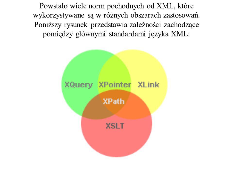 Na bazie XML powstały liczne języki specjalizowane MathML - matematyczny CML – chemiczny język znaczników pozwalający opisywać cząsteczki BITS – Język technologii bankowych OFX – Wymiana danych finansowych BIPS – Bankowy system płatności internetowych TIM – Znaczniki wymiany danych telekomunikacyjnych ebXML – XML dla biznesu elektronicznego SVG – Język opisu grafiki wektorowej wprowadzony w przeglądarce Internet Explorer.