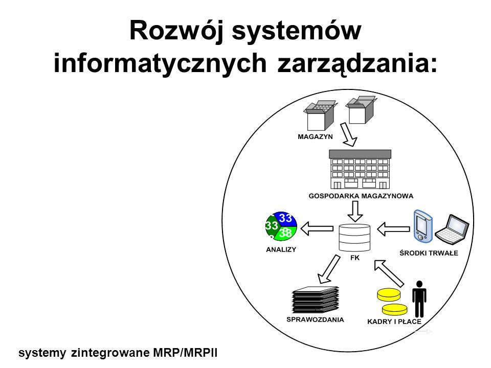 Rozwój systemów informatycznych zarządzania: systemy dziedzinowe