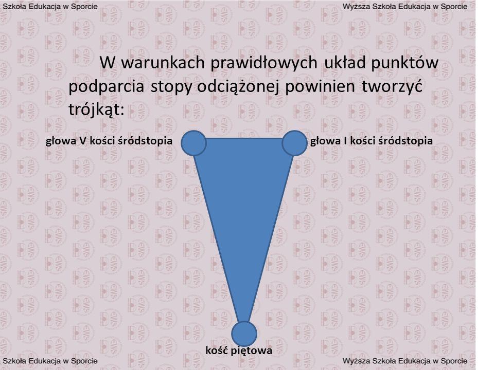 W warunkach prawidłowych układ punktów podparcia stopy odciążonej powinien tworzyć trójkąt: kość piętowa głowa V kości śródstopiagłowa I kości śródsto