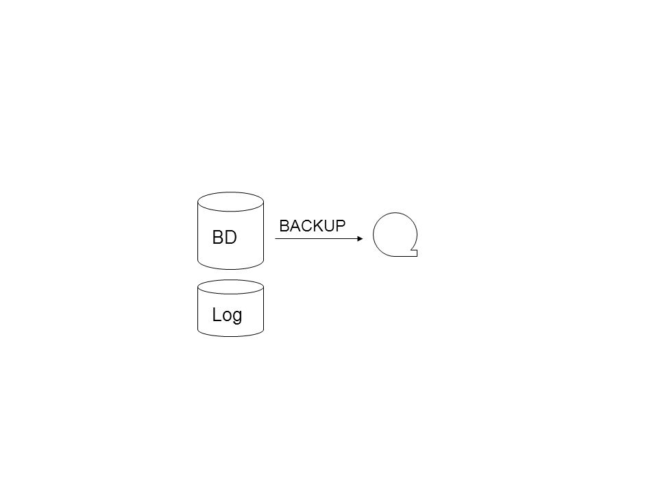 BD Log BACKUP