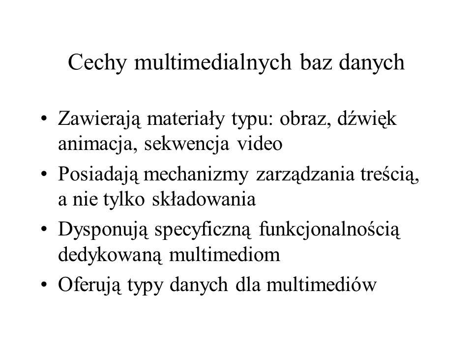 Metadane Parametry składowania (typ źródła, lokalizację, typ kompresji, datę i format) Typ MIME Obrazy (szerokość, wysokość, długość, liczba kolorów) Audio (kodowanie, liczba kanałów, częstotliwość, kompresja) Dodatkowe metadane (podawane przez użytkownika)